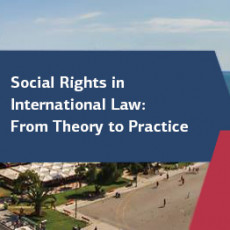 """Social Rights in International Law: From Theory to Practice"""